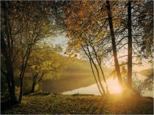 Imagen42 300x224 La belleza de la Meditación