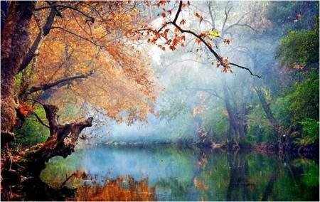 imagen 49 450x284 Meditar